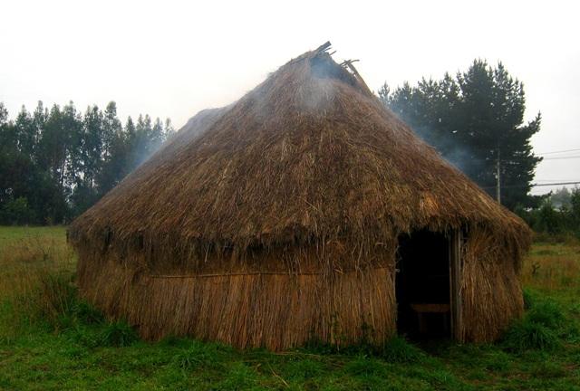 Ruka en el Wallmapu